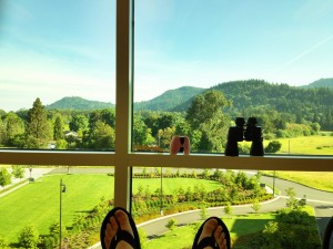 Chemo window view